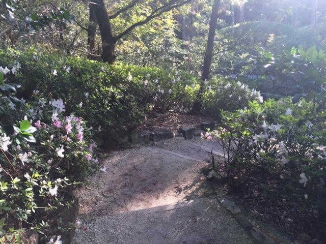 Weekend  Wanderings: Morikami Garden