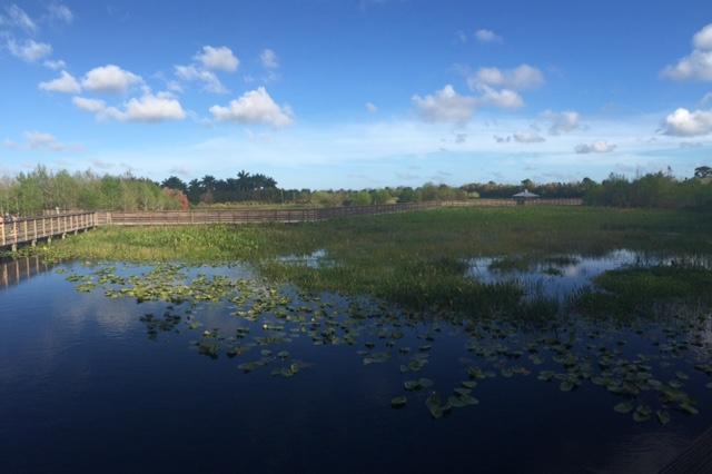 Weekend Wanderings: Green Cay Wetland Walk