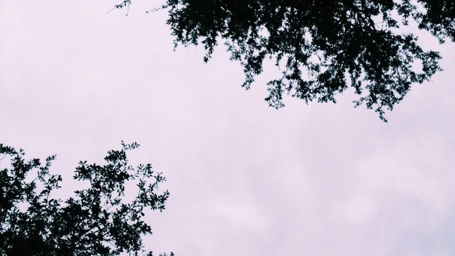 The sky is still grey after two rainy days.