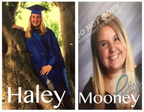 Haley SS1
