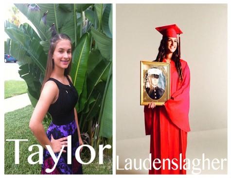 Taylor SS1