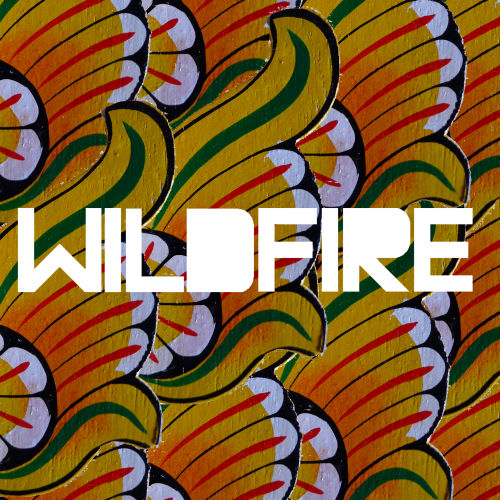 Song of the Week: Wildfire by SBTRKT (Feat. Little Dragons)