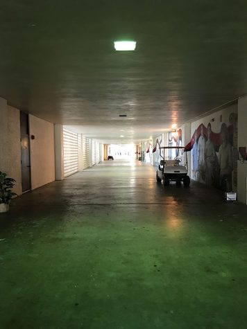 Bare through the halls
