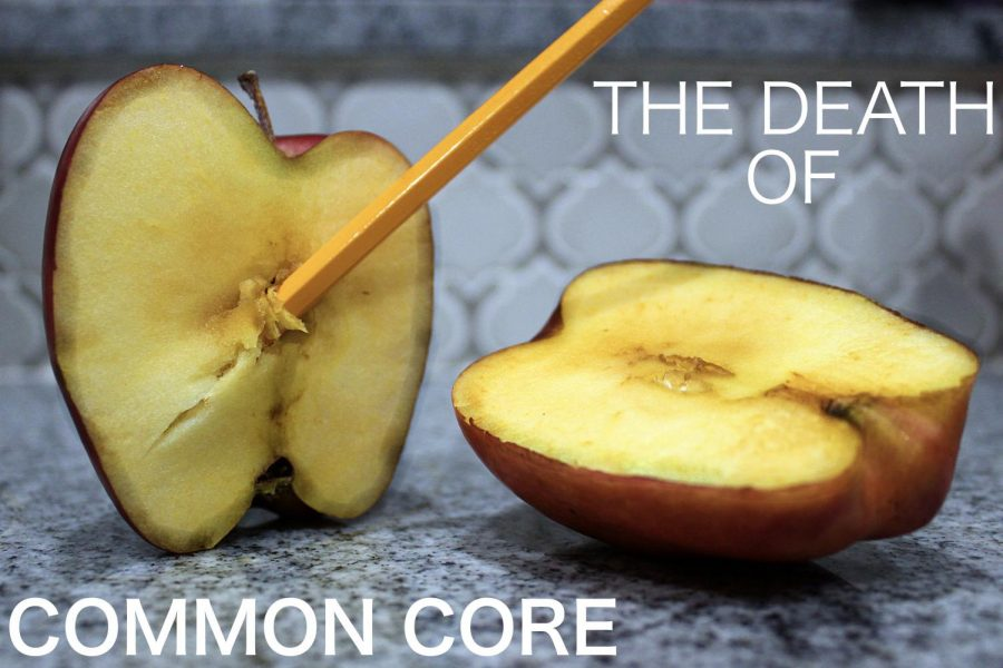 Florida Governor Ron DeSantis issued an executive order promising to eliminate common core from Florida schools.