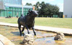 Campus Tour: USF