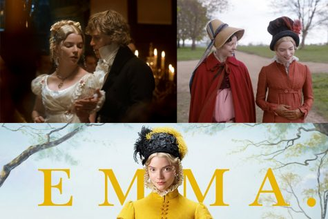 EMMA Review