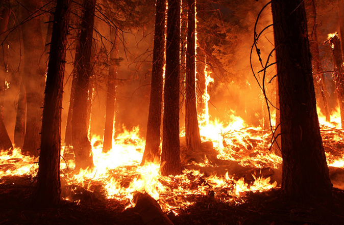 Wildfires spread throughout the west coast of the United States spreading due to massive droughts.